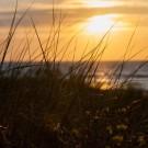 Ośrodek w Mrzeżynie - otoczenie - plaża