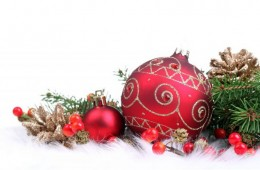 Boże Narodzenie z Geovitą
