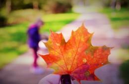 Jesienny relaks w Geovicie