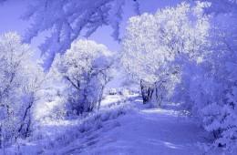 Zima w Hotelu Bukowy Dworek