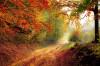 Jesień w Hotelu Bukowy Dworek***
